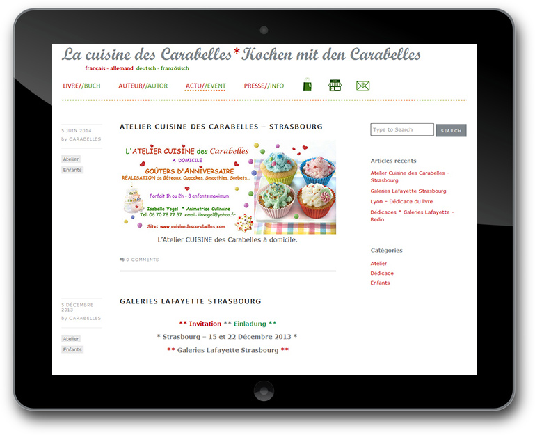 Buch Promotion Responsive Design Website