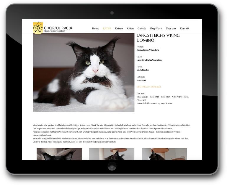 StudioPress Genesis Framework Child Theme WordPress for Cattery